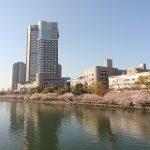 桜ノ宮のお花見に屋台はある?買い出しがしやすいおすすめの場所はココ!