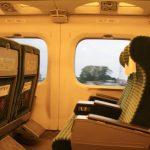 GWや夏休みお正月など大型連休でも新幹線の自由席に座れる!混雑回避方法!
